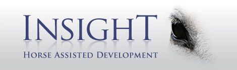 Insight Horse Assisted Development